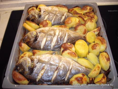 дорадо в духовке рецепт с фото с лимоном и