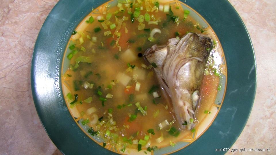 Уха из лосося в домашних условиях 103