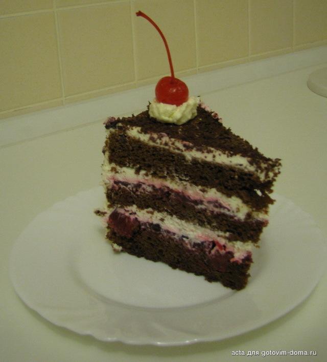 Торт шварцвальдская вишня рецепт с фото пошагово
