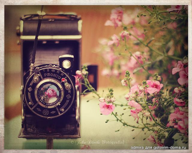 Открытка на день рождения фотоаппарат, год месяц