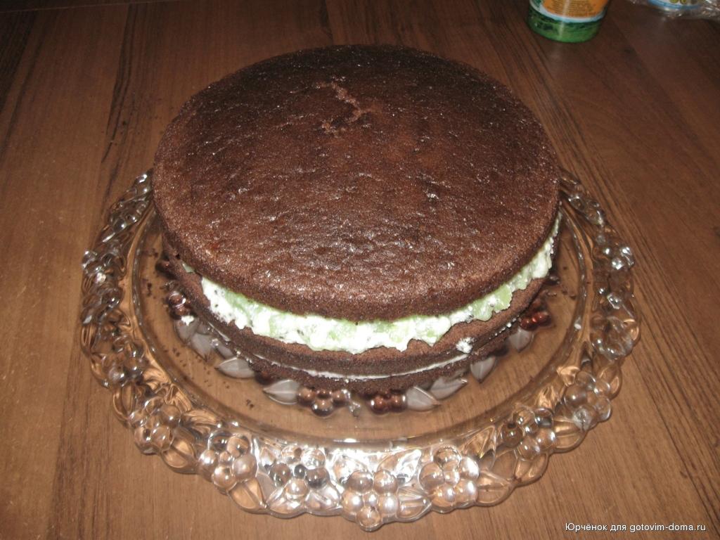 Шоколадный торт из коржей рецепт