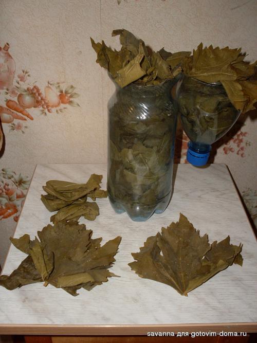 остаточного нагрева, как подготовить виноградные листья для долмы Джудит Нечто чудесное