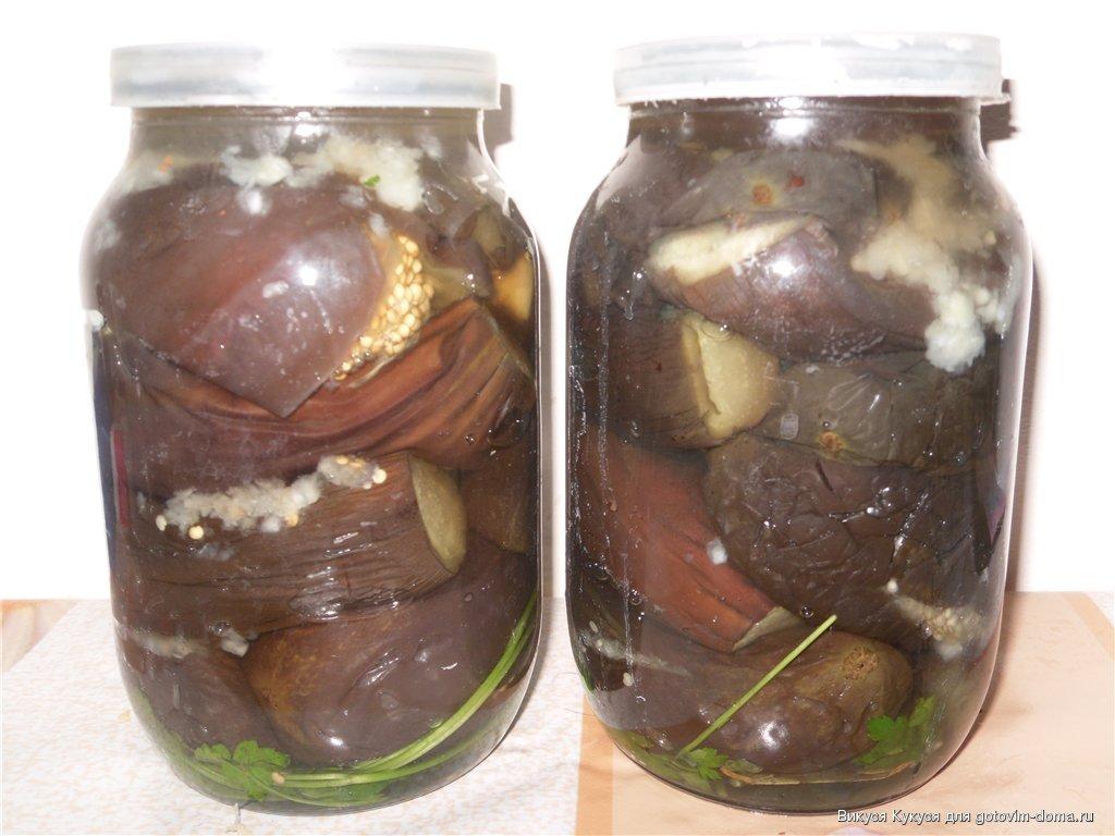 баклажаны квашеные на зиму в банках рецепты с фото