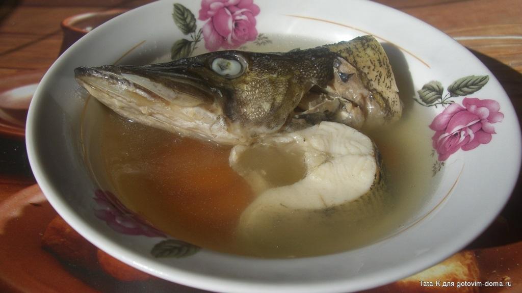 суп из щуки рецепт с фото
