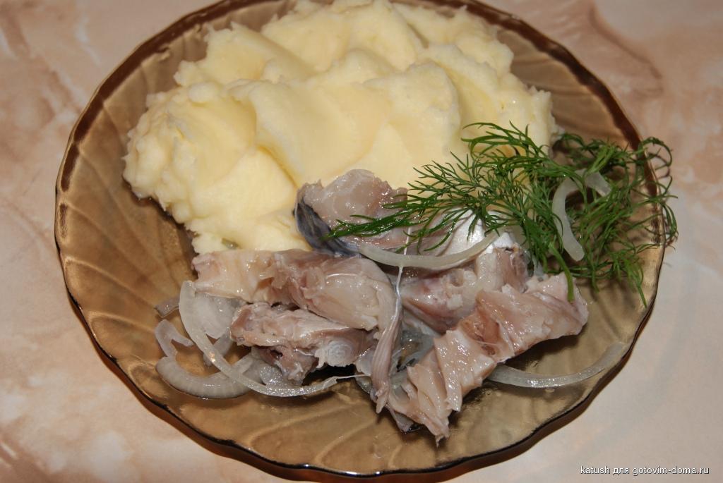 Скумбрия соленая в домашних условиях калорийность