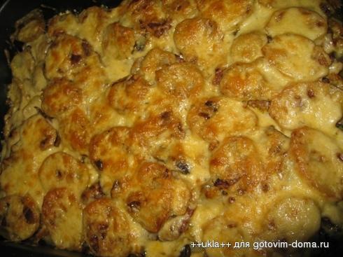 Оленина в духовке с картошкой рецепт 187