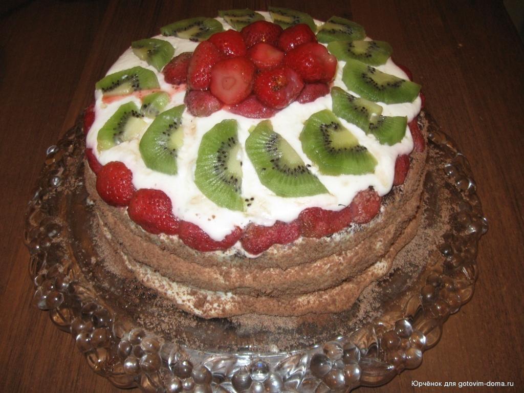 бисквит с киви рецепт с фото шоколадный