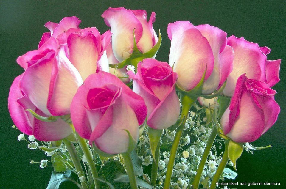 Фото открытки розы с днем рождения