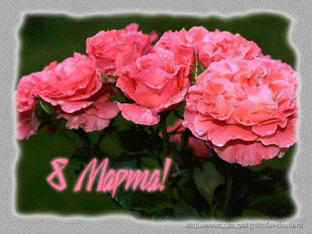 Приглашаем на праздник всех!!! - Страница 2 Thumb_94ea43710a294378514b37cacee3aeec_25095