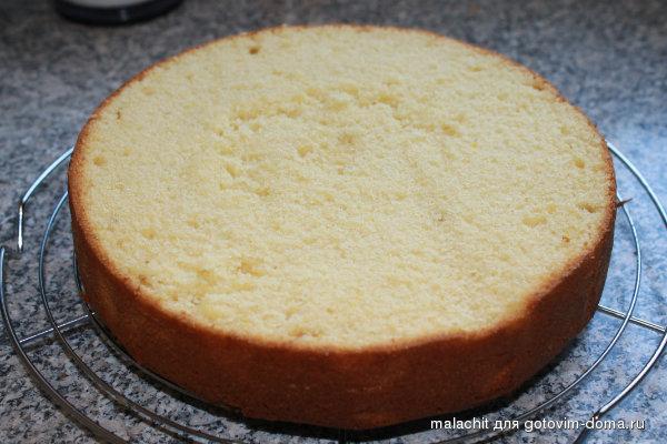 Блинный торт рецепт со сметанным кремом фото