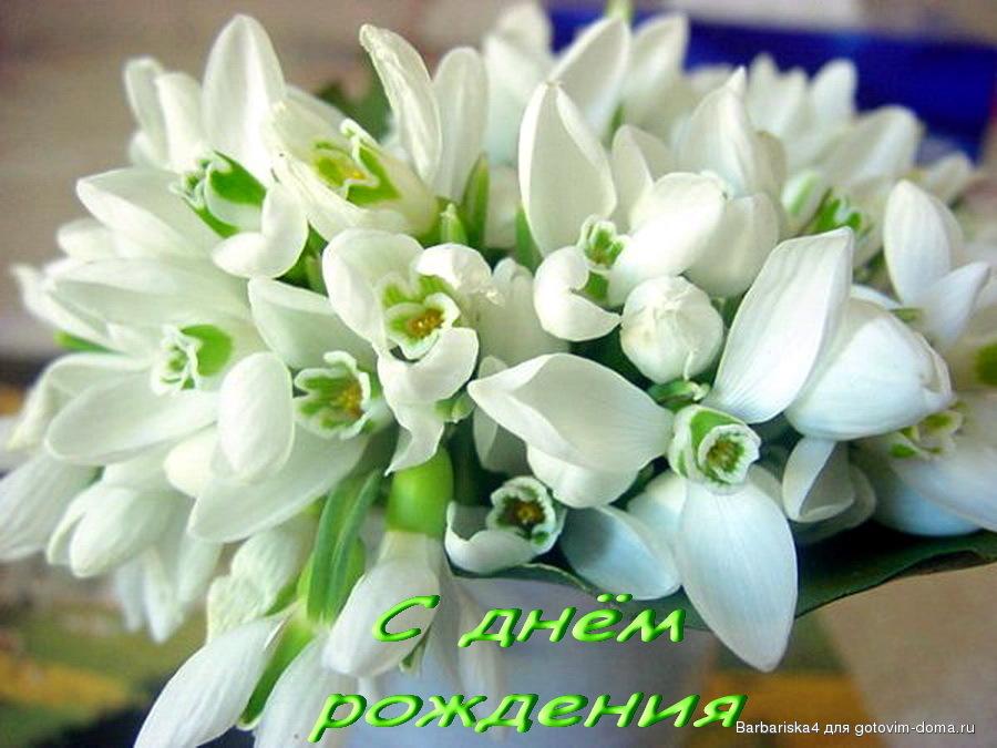 Прикольные открытки с днём рождения цветы