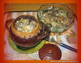 Горшочки со свининой и грибами и картошкой рецепт в 106