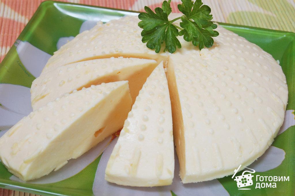 Из чего готовят сыр