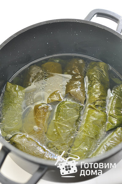 Огурцы в виноградных листьях – кулинарный рецепт
