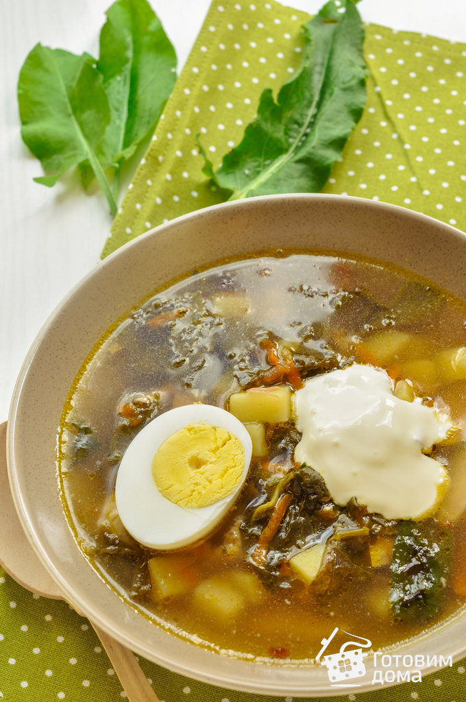 щавелевый суп рецепт на курином