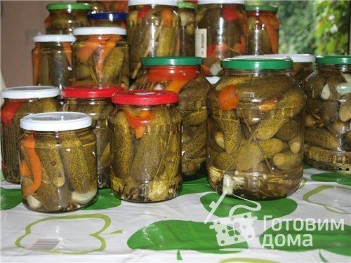 Огурцы солёные на зиму пошаговый рецепт с фото - Вкуссовет. ру